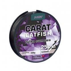 CARAT Cat Fish