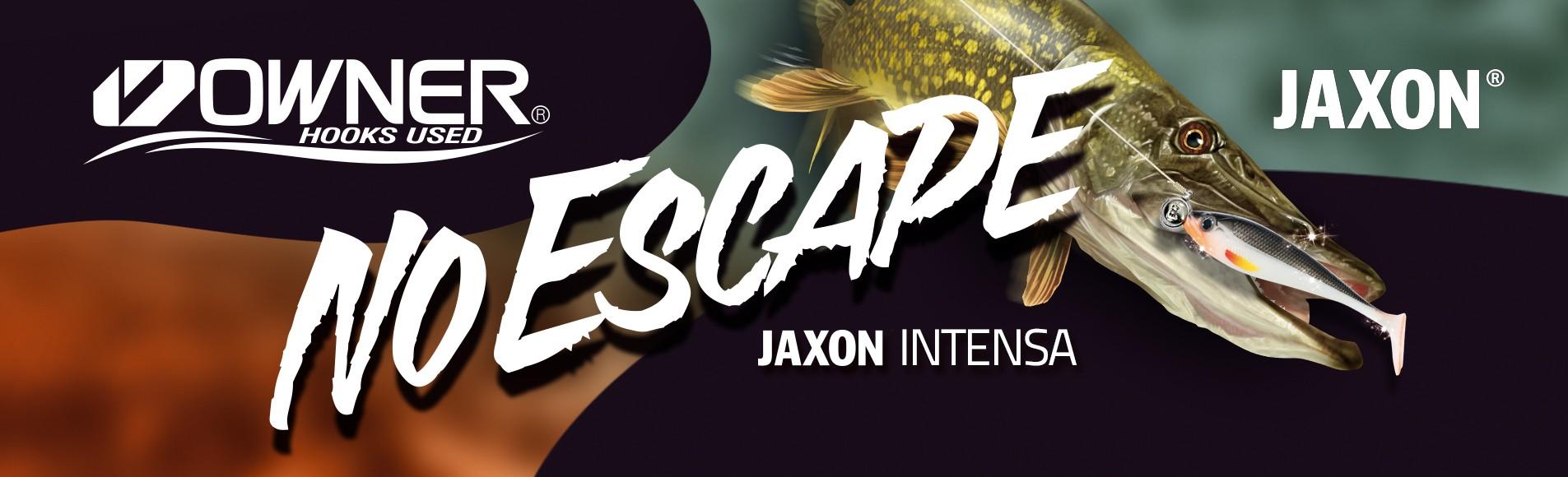 Jaxon Intensa